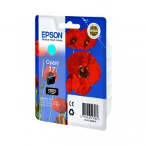 Картридж Epson T17024